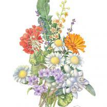 Alma's Bouquet